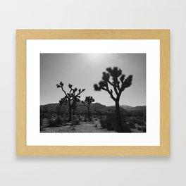 Joshua Trees Framed Art Print