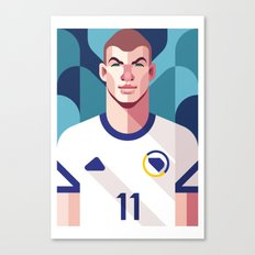 ED11 | Bosnia and Herzegovina Canvas Print