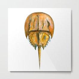 Brown Horseshoe Crab Metal Print