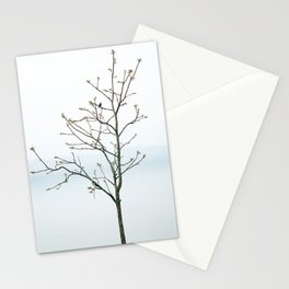 Bird and Bloom Stationery Cards