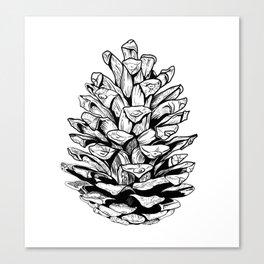 Pine cone illustration Canvas Print