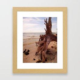 Sanibel Driftwood II Framed Art Print