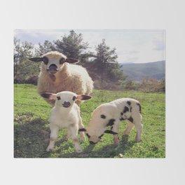 Ewe and Twin Spring Lambs Throw Blanket