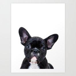 French bulldog portrait Art Print