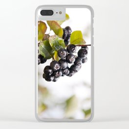 Chokeberries or aronia fruits Clear iPhone Case