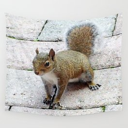 Squirreling Around Wall Tapestry