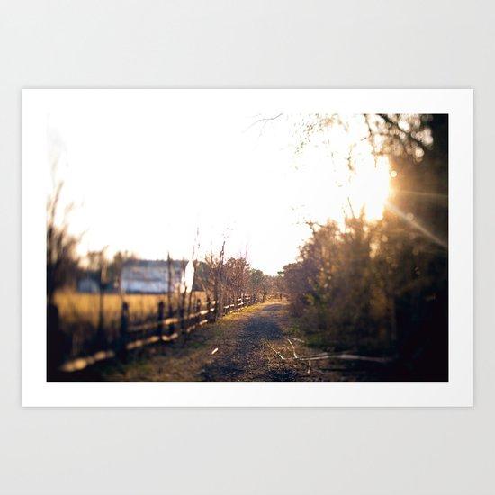 Trails in Brick, NJ Art Print