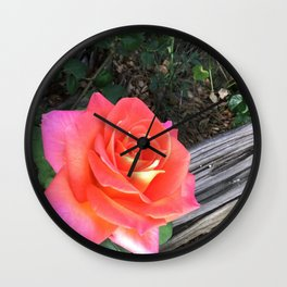 Rose On a fence Wall Clock