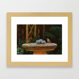 Winter Solstice Framed Art Print