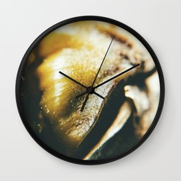 Pineapple Me Lucky Wall Clock