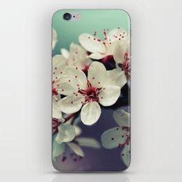 Cherry Blossom, Cherryblossom, Sakura, Vintage Style iPhone Skin