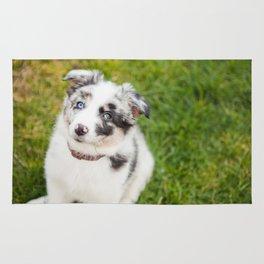 puppy Ben Rug