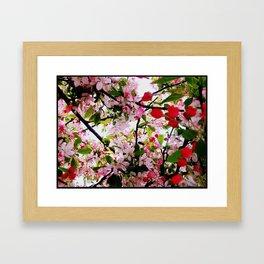 Blossum Framed Art Print
