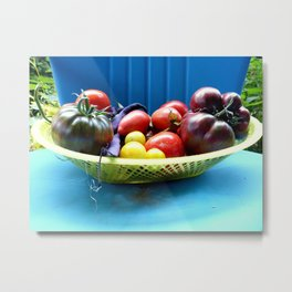 Heirloom Harvest Summer Tomatoes Metal Print