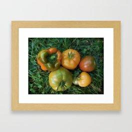 Fresh tomatoes and bell pepper Framed Art Print