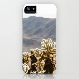 Cholla Cactus Garden iPhone Case