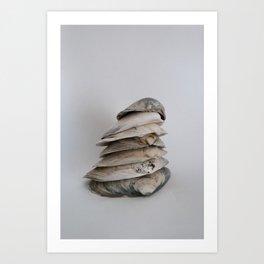Shell Stack  Art Print