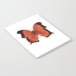 Butterflies: The Wizard Notebook
