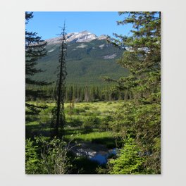Beautiful Bow Valley Canvas Print