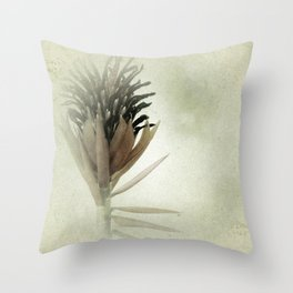 Bromeliad Flower Botanical Photograph Throw Pillow