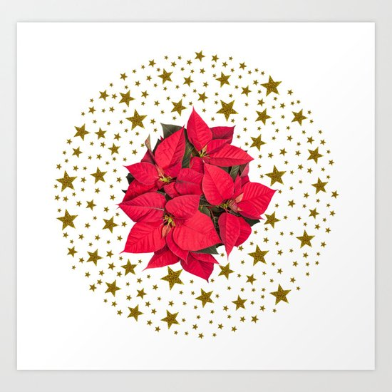 Red Christmas flower and sparkly gold stars Art Print