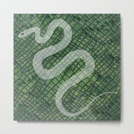 Snakeskin and snake Metal Print