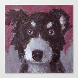 Po the Dog Canvas Print
