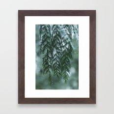 Nature's Drapery Framed Art Print