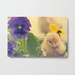 Chicks and Violets Metal Print