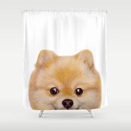 Pomeranian Dog illustration original painting print Shower Curtain