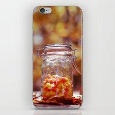 Autumn Treat iPhone & iPod Skin