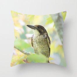 Australian Butcher Bird Throw Pillow