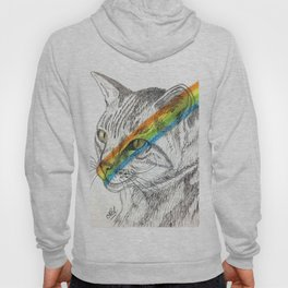 Cat's eye rainbow Hoody