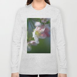 Apple Tree Blossoms In Spring Long Sleeve T-shirt