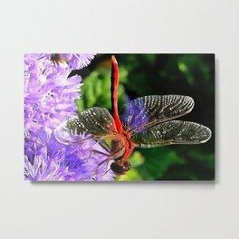 Red Dragonfly on Violet Purple Flowers Metal Print