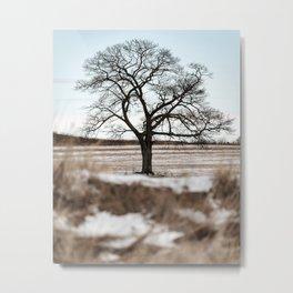 Rural Icon Metal Print