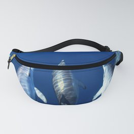 Playful and friendly dolphins Fanny Pack