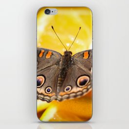 Common Buckeye Junonia Coenia iPhone Skin