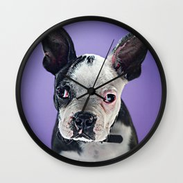Super Pets Series 1 - Super Bugsy 2 Wall Clock