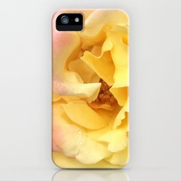 Summer Rose in Pink and Yellow iPhone Case