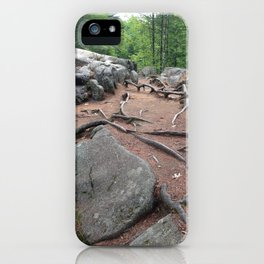 In the Woods of Wisconsin, the path is not always clear iPhone Case
