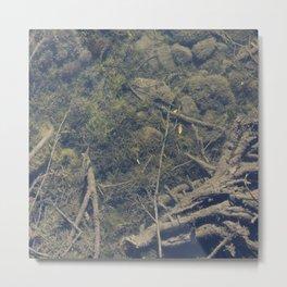 Underwater 03 Metal Print