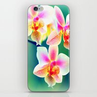 orchid iPhone & iPod Skins featuring orchid by haroulita