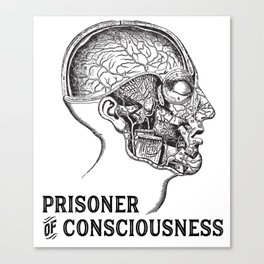 Prisoner of Conciousness Canvas Print