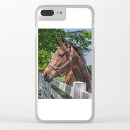 My Favorite Horse Clear iPhone Case