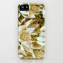 Joshua Tree Blooms iPhone Case
