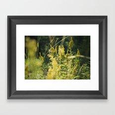 Mountain Meadows 03 Framed Art Print