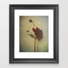 Whispers of Love Framed Art Print