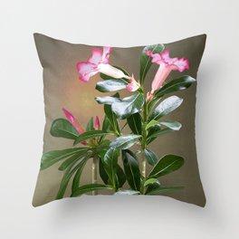 Spade's Desert Rose Throw Pillow