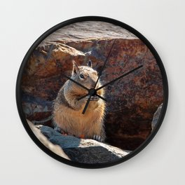 Squirrel Having Snack Wall Clock
